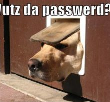 too many passwords to remember